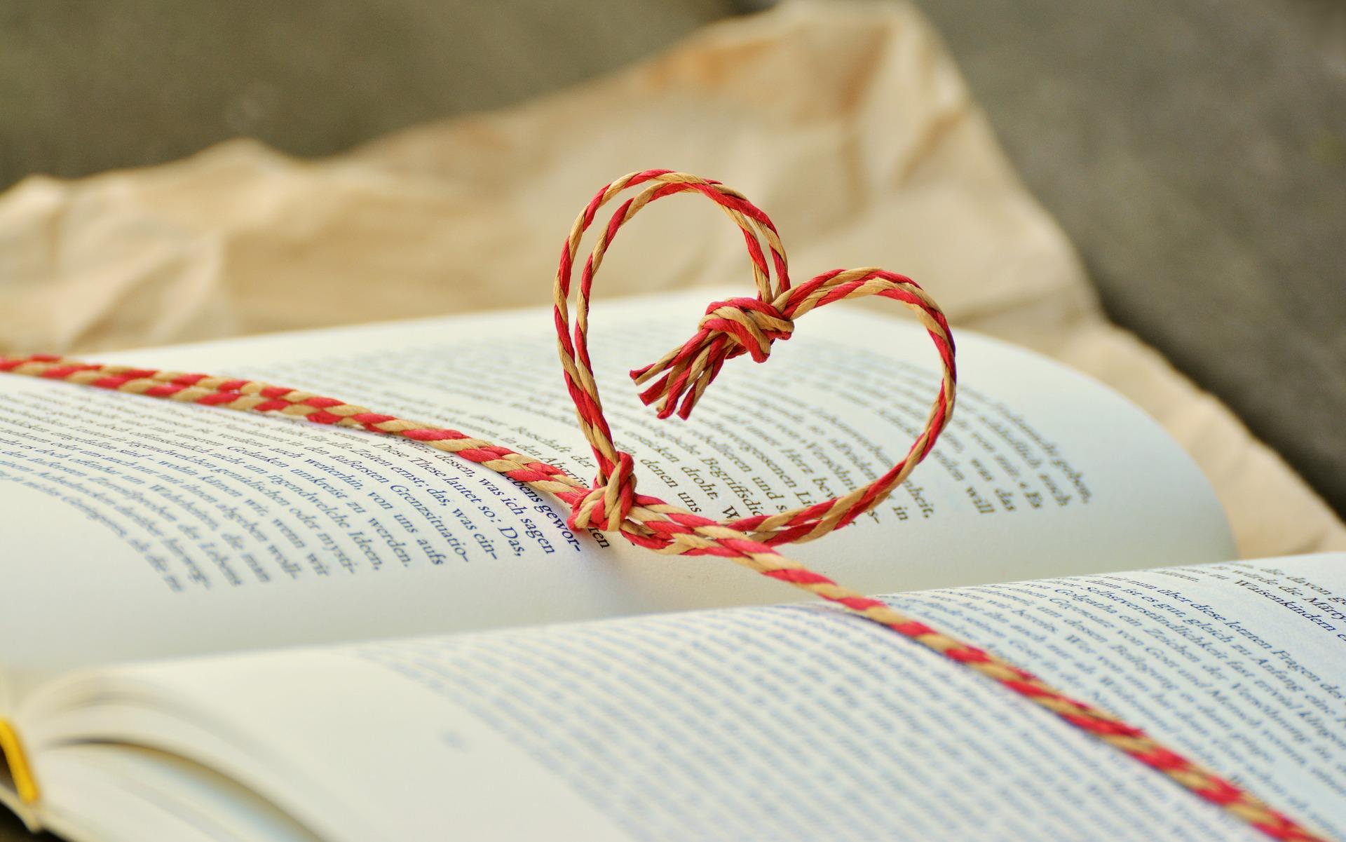 Love Learning